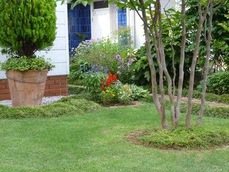 エルグデザインの芝生.JPG