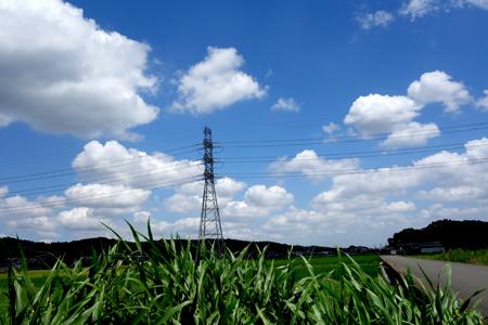 夏の景色.JPG