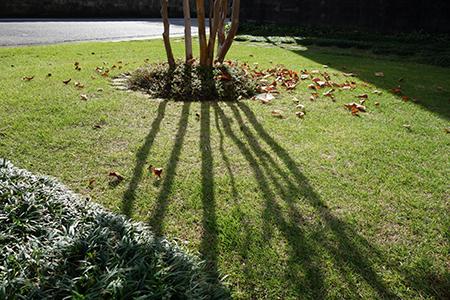 エルグデザイン秋の庭-5.jpg