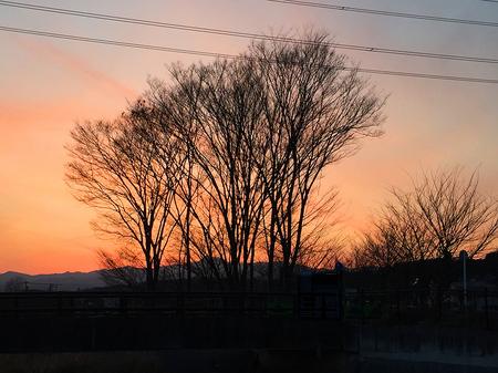 霞川の風景.jpg