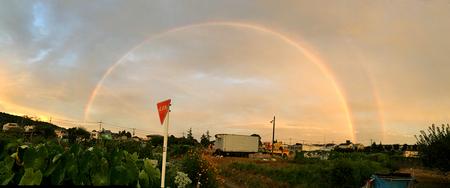虹-2.jpg