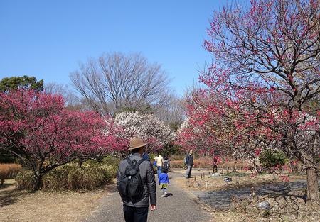 昭和記念公園-2.JPG