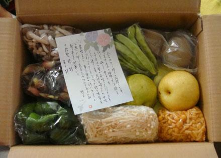 エルグデザイン二階堂美子実家からの野菜.JPG
