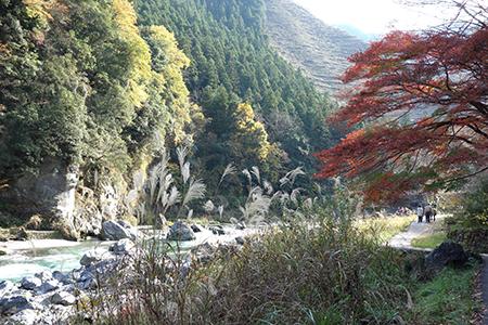 多摩川-9.jpg