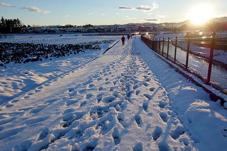 エルグデザインの冬の散歩.jpg