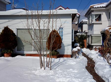 エルグデザイン雪2.JPG