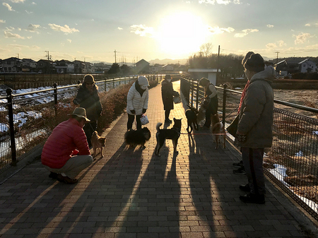 犬と人間.jpg