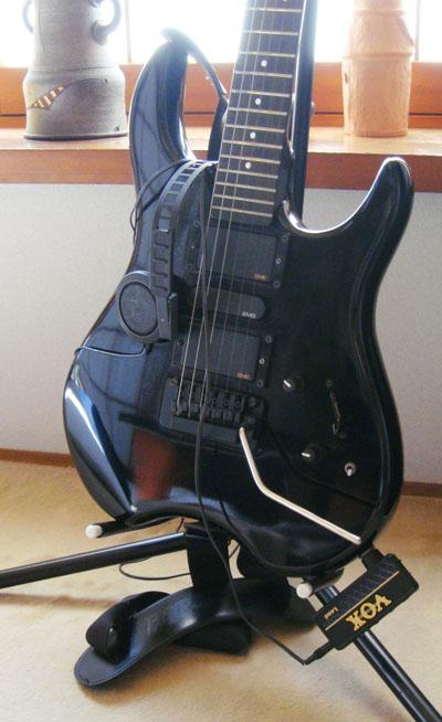 エルグデザイン:二階堂隆の趣味のギター